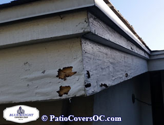 Dry Rot Repair Mission Viejo with Blue Knight .